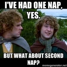 The Hobbit Meme - my husband called me the hobbit of sleep today meme guy