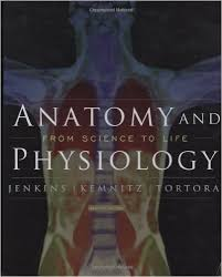 Anatomy And Physiology Pdf Books Anatomy And Physiology From Science To Life 2nd Edition Pdf