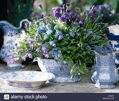 kenneth turner arranged blue purple spring flowers in blue white