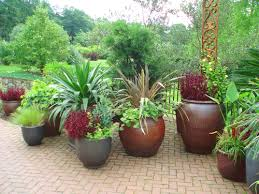 Patio Container Garden Ideas Gorgeous Patio Pot Plants Ideas 35 Potted Plant And Flower