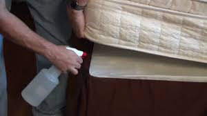 Kill Bed Bugs Can You Use Pesticides To Kill Bed Bugs Bedbugs Net