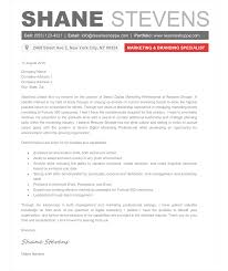 creative cover letter cv resume ideas