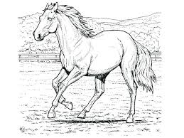 coloring sheets of a horse breyer coloring pages coloring pages horse color page for the cowboy