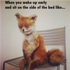 I Woke Up Like This Meme - this was me when i woke up this morning valme