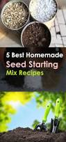 best 25 seed starting ideas on pinterest grow lights growing