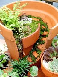 Dish Garden Ideas Cactus Dish Garden Pots Dish Gardens Garden Of Oils