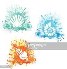 sea shell ornaments sealife nautical or vector getty