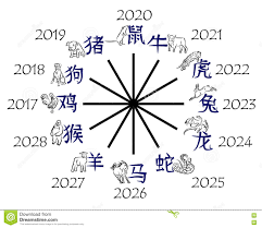 vector image of the twelve signs of the chinese zodiac rat ox