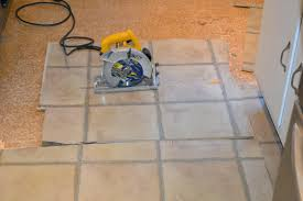 refinishing wood floors with dogs hardwood pet stains laferida