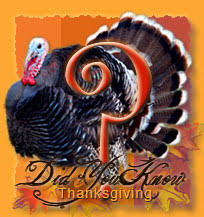 thanksgiving figures did you facts figures folklore about the pilgrims the