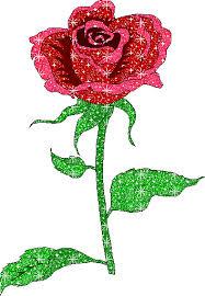 imagenes de amor con rosas animadas desgarga gratis los mejores gifs animados de rosas imágenes