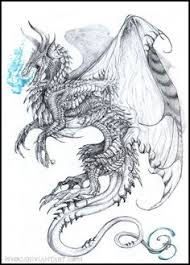 dragons fairies coloring pages fairy dragon sheyenneart