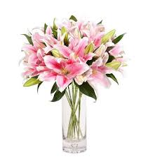 pink lillies 18 pink lilies in vase fairy of pink send flowers to china