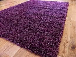 extra large purple medium new modern soft thick shaggy rugs non