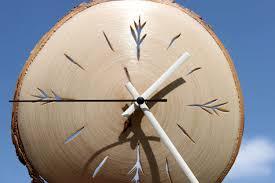 birch tree clock forest decor wood clock wall clock wooden