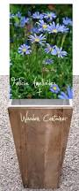 best 25 wooden containers ideas on pinterest potted plants
