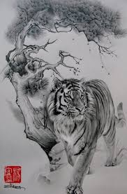 402 best tigers images on animals pictures