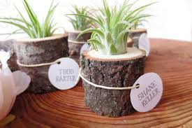plant wedding favors wedding plant favors are for a green wedding