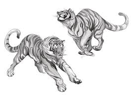 382 best paws images on pinterest draw drawings and a tiger