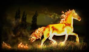 ferrari horse vs mustang horse fire horse wallpaper