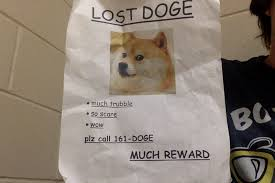 So Doge Meme - lost doge meme original