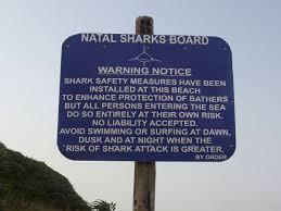 kwazulu natal sharks board wikipedia