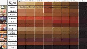 loreal hair color chart ginger lena hoschek how to use hair color chart shades of red hair to
