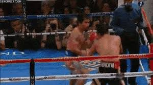 Pacquiao Knockout Memes - pacquiao vs marquez knockout señor gif funny gifs gif memes