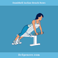Incline Bench Dumbbell Rows Dumbbell Incline Bench Rows Dr Spencer Nadolsky