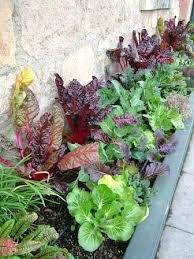 herb gardens for small spaces u2013 exhort me