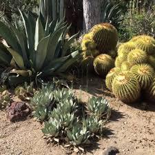 Huntington Botanical Gardens Pasadena by Huntington Library Art Collections U0026 Botanical Gardens 7653