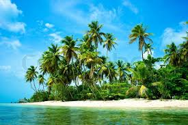 landscape scenery of a beautiful tropical island with green palm