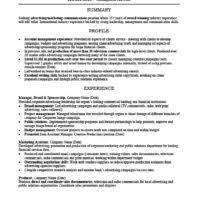 Resume For Marketing Job by Others 25 Free Advertising Account Executive Resume 24 Job