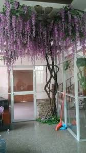 5 ft wisteria silk tree purple silk tree wisteria and products