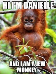 Monkey Meme Generator - meme creator hi i m danielle and i am a jew monkey meme