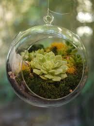 decor diy hanging terrarium for home accessories ideas