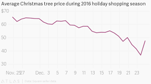 the best time to buy a tree according to square sales