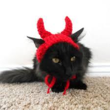Halloween Costumes Cat Hat Shop Cat Hat Halloween Wanelo