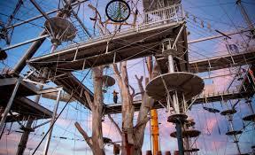 sydney the hills treetops sydney sydney u0027s got an epic new aerial adventure park concrete