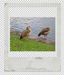 free hi res blank polaroid frames fuzzimo