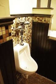 cave bathroom ideas cave bathroom gen4congress com