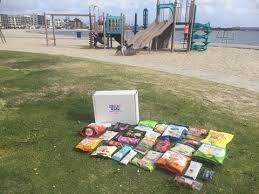 Snacks Delivered Slide Into Summer With Healthy Snacks U2013 Great Kids Snack Box