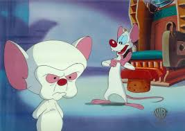 pinky and the brain 84 best pinky and the brain images on pinterest the brain