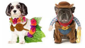 costumes for dogs dog costume ideas 32 easy costumes for your canine