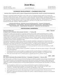 executive director resume simple executive director resume sle non profit sle non