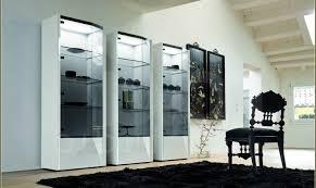 Modern Corner Curio Cabinet Cabinet Curio Cabinet Ideas Likable Diy Curio Cabinet Ideas