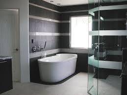 contemporary bathroom pictures glass swing door shower screen bowl