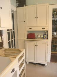Kitchen Wall Pantry Cabinet Top Shallow Pantry Cabinet On Narrow Kitchen Pantry Storage