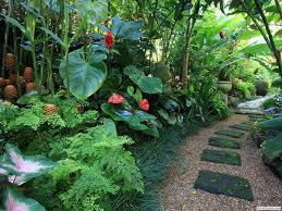 290 best tropical landscape ideas images on pinterest tropical