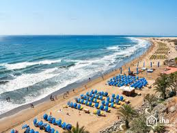 maspalomas rentals in an apartment flat for your vacations